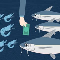 Hàng loạt chi phí tăng cao đè nặng lên doanh nghiệp thủy sản