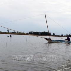 Bảo tồn giống cá Cóc trên sông Mekong