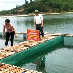 Giải pháp phát triển nghề nuôi cá nước ngọt ở huyện Thạch Thành