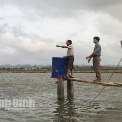 Chuyển đổi diện tích cấy lúa kém hiệu quả sang nuôi thủy sản