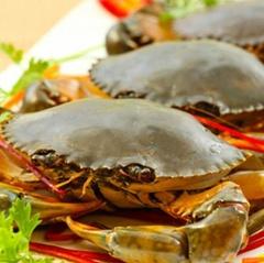 4 món ăn đặc sản Cà Mau vào Top 10 món ăn đặc sản Việt