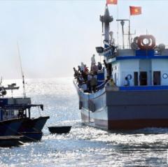 Ngành Thủy sản: Hướng tới mục tiêu đạt sản lượng khai thác 119.500 tấn