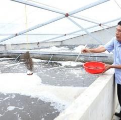 Chuyện xây nhà nuôi tôm ở huyện ven biển Hà Tĩnh