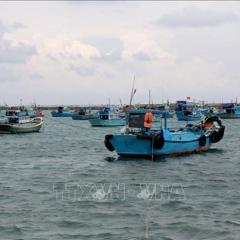 Không cho xuất bến tàu cá chưa lắp thiết bị giám sát hành trình