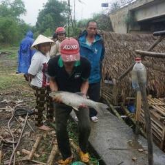 Tập trung khắc phục hiện tượng thủy sản nuôi bị chết