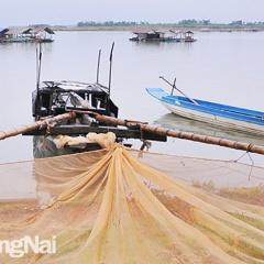 Cấm các hình thức khai thác thủy sản tận diệt