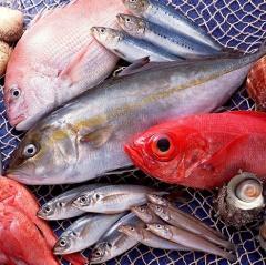 Các thực phẩm thủy hải sản có sạch như chúng ta nghĩ ?