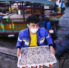 Ngư dân Hà Tĩnh khai thác gần 9.300 tấn hải sản nhờ thời tiết thuận lợi