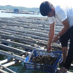 Sông Cầu: Áp dụng khoa học kỹ thuật vào nuôi trồng thủy sản