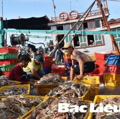 Mở rộng, nâng cấp Cảng cá Gành Hào thành cảng loại I: Gỡ khó từ nguồn vốn