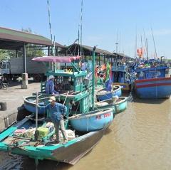 Những hiệu quả tích cực từ chống khai thác hải sản bất hợp pháp