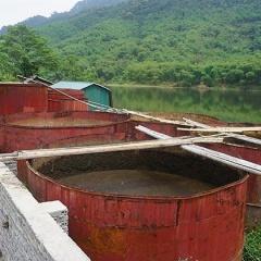 Thủy sản chết hàng loạt trên sông Mã: Liên tục phát hiện ống ngầm xả thải bẩn