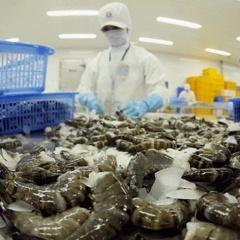 Phát triển ngành Thủy sản theo hướng bền vững, trách nhiệm