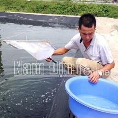 Đảm bảo an toàn nuôi thủy sản mùa nắng nóng
