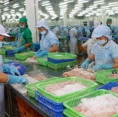 Trung Quốc kiểm soát chặn hàng thủy sản nhập khẩu