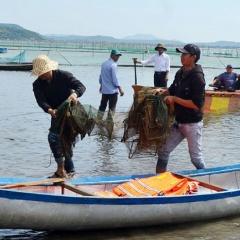 Tăng cường bảo vệ nguồn lợi thủy sản đầm Ô Loan