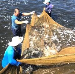Xã Hoằng Phong phát triển nuôi trồng thủy sản