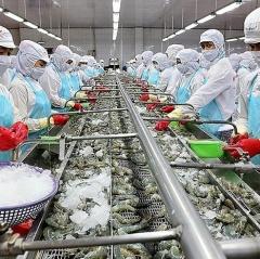 Xuất khẩu thủy sản dự báo thu về 2,1 tỉ USD trong quý II/2021