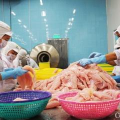 Doanh nghiệp thủy sản mong vắc xin sớm, VASEP đăng ký mua 500.000 liều