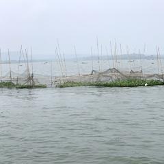 Xử lý nghiêm khai thác tận diệt thủy sản