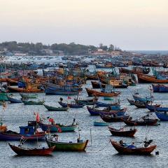 Phạt 1,734 tỷ đồng và tịch thu tàu cá vi phạm lãnh hải 2 lần