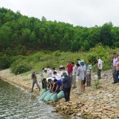 Tái tạo nguồn lợi thủy sản với hơn 13.000 con cá giống