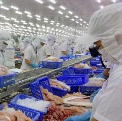 Xuất khẩu thuỷ sản tiếp tục giảm sang thị trường Trung Quốc do Covid-19