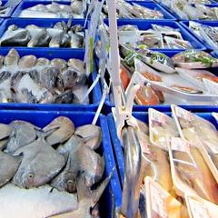 Việt Nam: Xuất khẩu hải sản tăng 26% trong tháng 05/2021