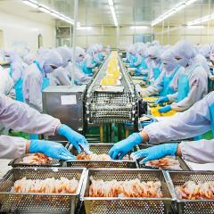 Cà Mau không để đứt gãy chuỗi cung ứng ngành thủy sản