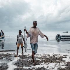 WTO cam kết sớm đi đến Hiệp định trợ cấp thủy sản