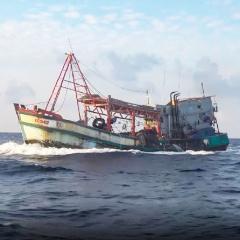 Truy bắt tàu cá có dấu hiệu vi phạm vùng biển nước ngoài