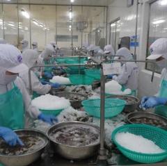 Thách thức trong sản xuất và tiêu thụ thủy sản
