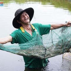 Mô hình nuôi tôm kết hợp với cá, cua biển có hiệu quả kinh tế
