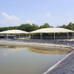 Tăng cường bảo vệ bể ương tôm bằng hệ thống tuần hoàn nước
