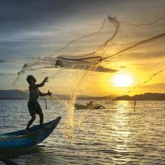 TPHCM: Tăng cường biện pháp bảo tồn biển, phát triển nguồn lợi thủy sản