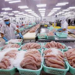 Tháng 8/2021, xuất khẩu thuỷ sản sang các thị trường giảm 16-50%