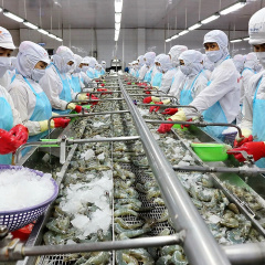 Thủy sản Việt Nam đặt mục tiêu trong số 5 nước hàng đầu thế giới vào năm 2030