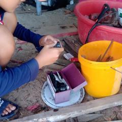 Nâng cao sức đề kháng vật nuôi thủy sản trong mùa mưa