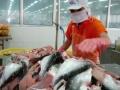 Thủy sản Hùng Vương vào siêu thị nước ngoài