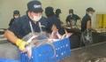 GODACO đưa vào hoạt động nhà máy chế biến công suất 150 tấn/ngày