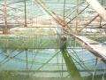 Quy hoạch khu chế biến hải sản: Bảo đảm môi trường, phát triển bền vững