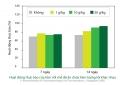 Nghiên cứu: Ứng dụng tỏi trong điều trị bệnh trên tôm biển