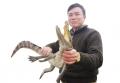 """Vua cá sấu miền Bắc và cú """"bẻ ghi"""" sang nông nghiệp xanh"""