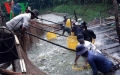 Nuôi cá tra công nghiệp thu lãi tiền tỷ ở Tiền Giang