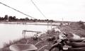 Vũng Tàu: Tìm giải pháp cung cấp nước mặn cho vùng nuôi tôm
