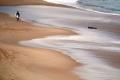 Úc đóng cửa 4 bãi biển vì cá mập