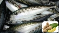 Bảo quản cá nục bằng dịch chiết gừng, riềng