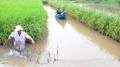 Biến đổi khí hậu và nuôi trồng thủy sản