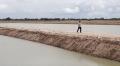 Nông dân ồ ạt bỏ lúa, đào ao nuôi cá