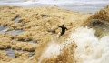 Lũ bọt biển ở New Zealand
